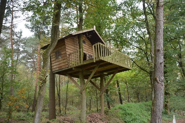 dům na strome