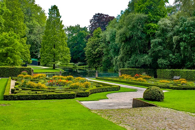 upravený park